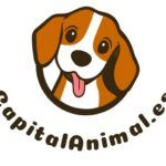 Mejores royal canin obesity para gatos de este mes - Cómpralos On-line