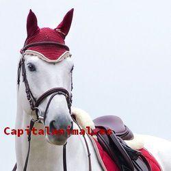 Accesorios para caballos