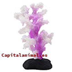 Adorno de coral para acuarios: ¿Compensa comprarlos en nuestra web?