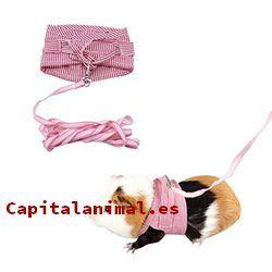 Adquiere On-line la correa para hamster