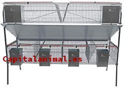 Catálogo de jaulas para conejos amazon para comprar online