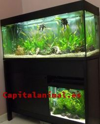 Comentarios y opiniones de acuarios 90 litros para comprar Online
