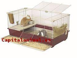 Jaulas para conejos enanos - Catálogo online - Top 12