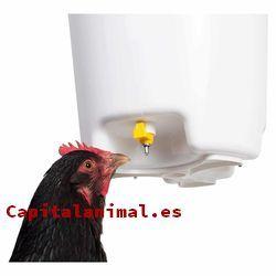 Lista de bebederos de pollos para comprar – Los más solicitados