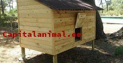 Listado de gallineros dublin para comprar online