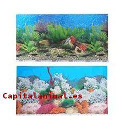 acuarios para peces baratos