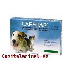 ¿Cuál es el mejor antiinflamatorio para gatos para el 92% de los consumidores?