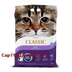 Mejores arenas para gatos de este mes - Cómpralas Online