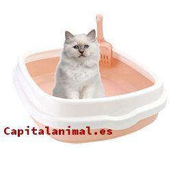 areneros con tapa para gatos baratos