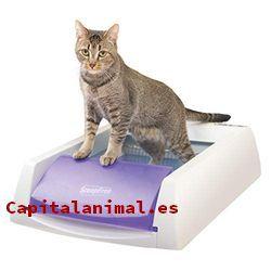 areneros cubiertos para gatos baratos