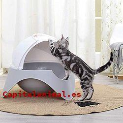 areneros para gatos berto baratos