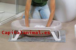Mejores bañeras grande para pajaros de este año - Dónde comprarlas online