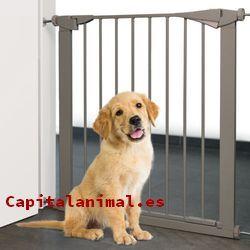 barreras para perros baratos