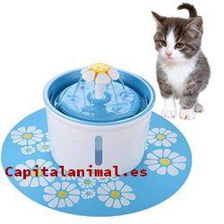 bebederos antivuelco para gatos baratos