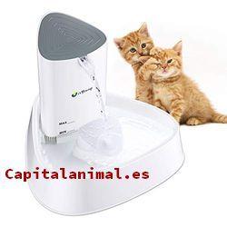 bebederos automatico para gatos baratos