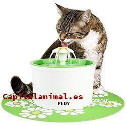 Lista de bebederos para gatos para comprar – Los más solicitados