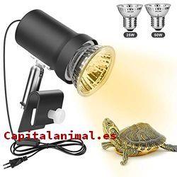 bombillas de infrarrojos para reptiles baratos
