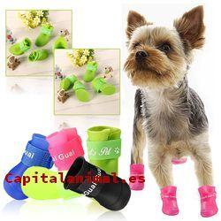 botas para perros baratos