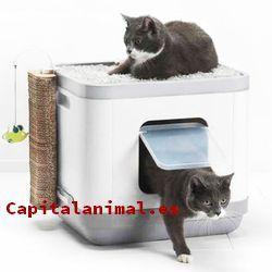 Mejores cagaderos para gatos - Comprar Online