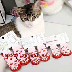Calcetines para gatos ¿Merece la pena su compra?