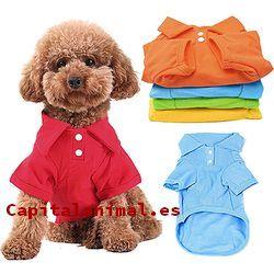 camisetas para perros baratos