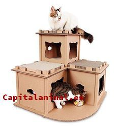 casas para gatos de carton baratos