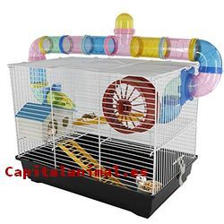 casas para hamster baratos