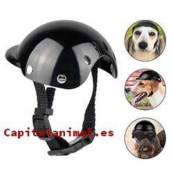 cascos para perros baratos