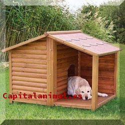 casetas para perros baratos