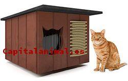 Casitas para gatos Ventajas e Inconvenientes