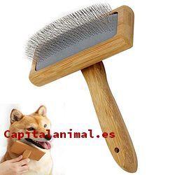 cepillos de puas para perros baratos