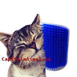 cepillos masajeador para gatos baratos