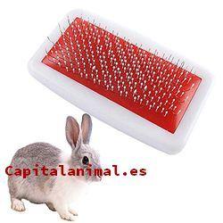 cepillos para conejos baratos