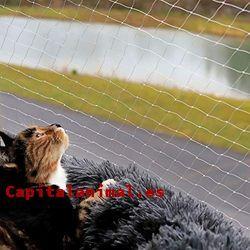 cerramientos jardin para gatos baratos
