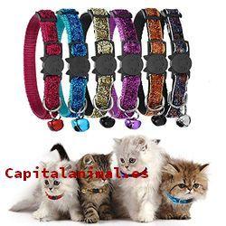 collares antiparasitario para gatos baratos