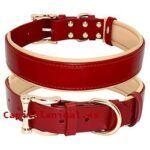Opiniones y comentarios de collares de cadena para perro para comprar on-line