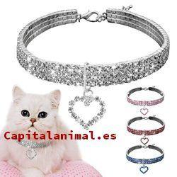 collares electrico para gatos baratos