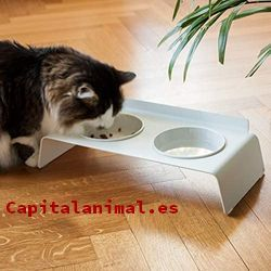 comederos antivoracidad de gatos baratos