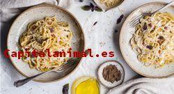 Mejores comidas para mirlos - Comprar Online
