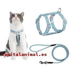 correas para gatos baratos