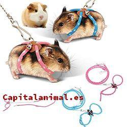 correas para hamster baratos