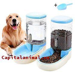dispensadores de agua para perros baratos