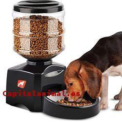 dispensadores de comida para perros baratos