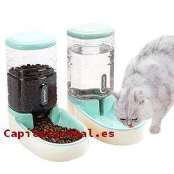 Rebajas online de dispensadores de comidas para gatos