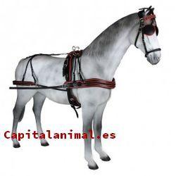 enganches de caballos baratos