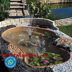 estanques para peces baratos