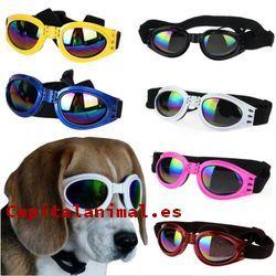 gafas de sol para perros baratos