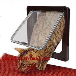 gateras para gatos baratos