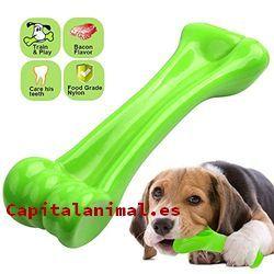 huesos para perros baratos