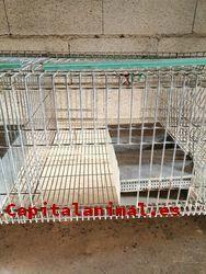 Mejores jaulas para conejos de granja - Mejor selección en línea